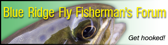 Fly Fishing NC, VA, TN, Souteast, southern states